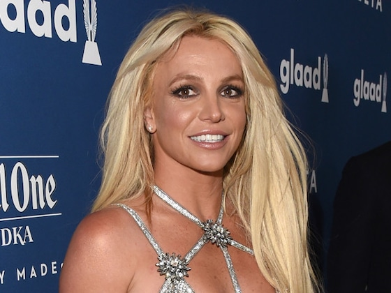 Britney Spears Asks Trolls to Stop Sharing ''Mean Comments'' About Her