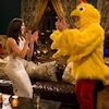 The Bachelorette, Chicken Suit, BECCA KUFRIN, DAVID