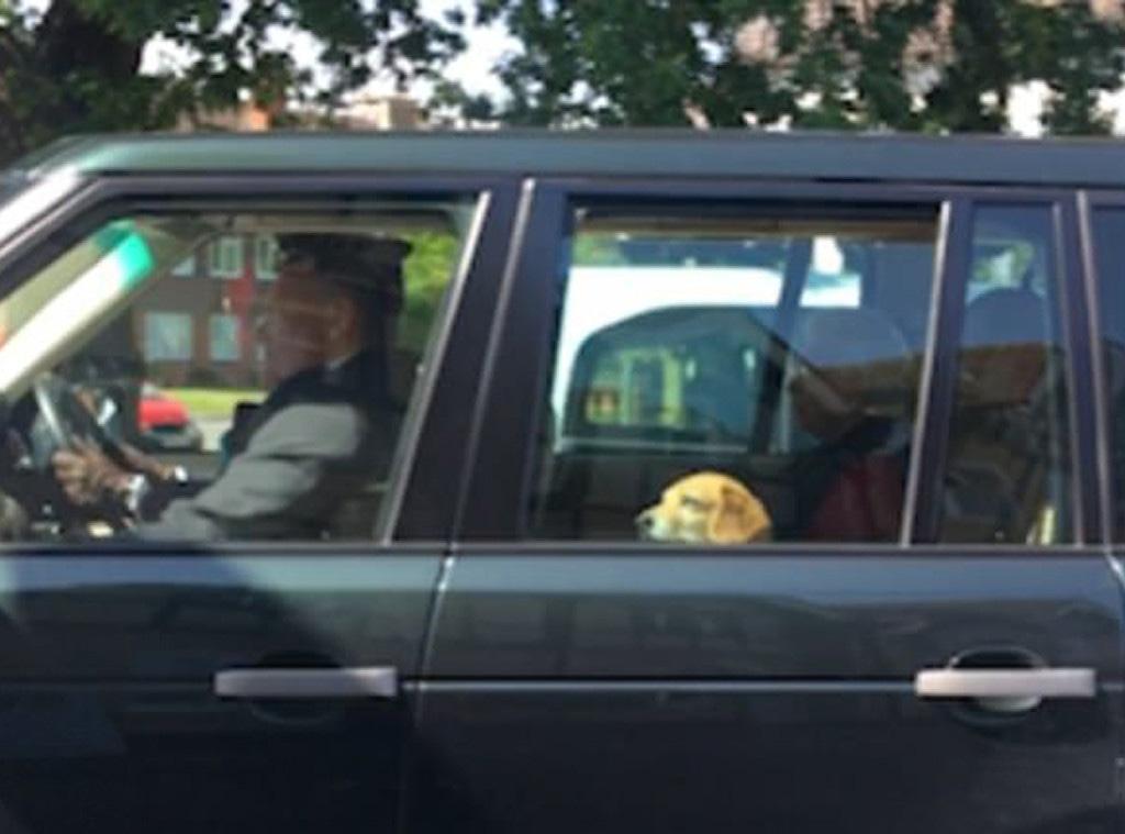 Queen Elizabeth II, Meghan Markle, dog