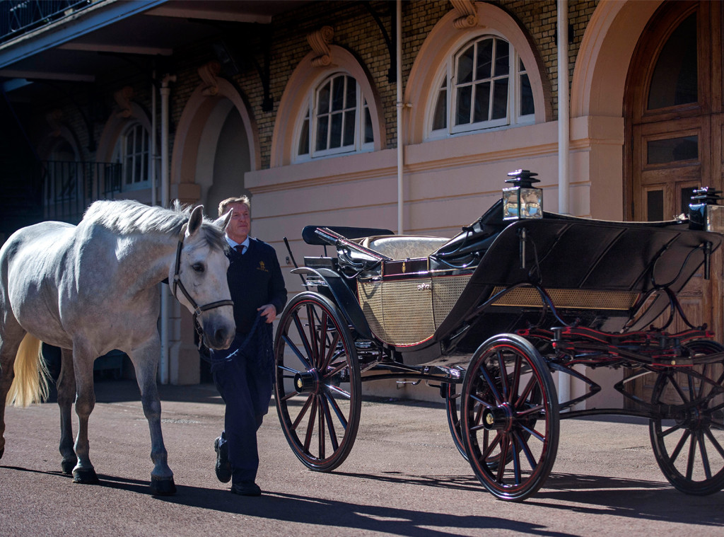 Royal Carriage, Royal Horses