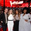 The Voice, Season 14