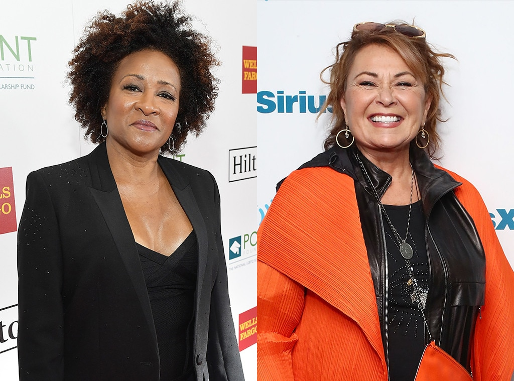 Wanda Sykes quits 'Roseanne' hours after star's racist tweet