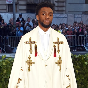 Chadwick Boseman, 2018 Met Gala, Red Carpet Fashions