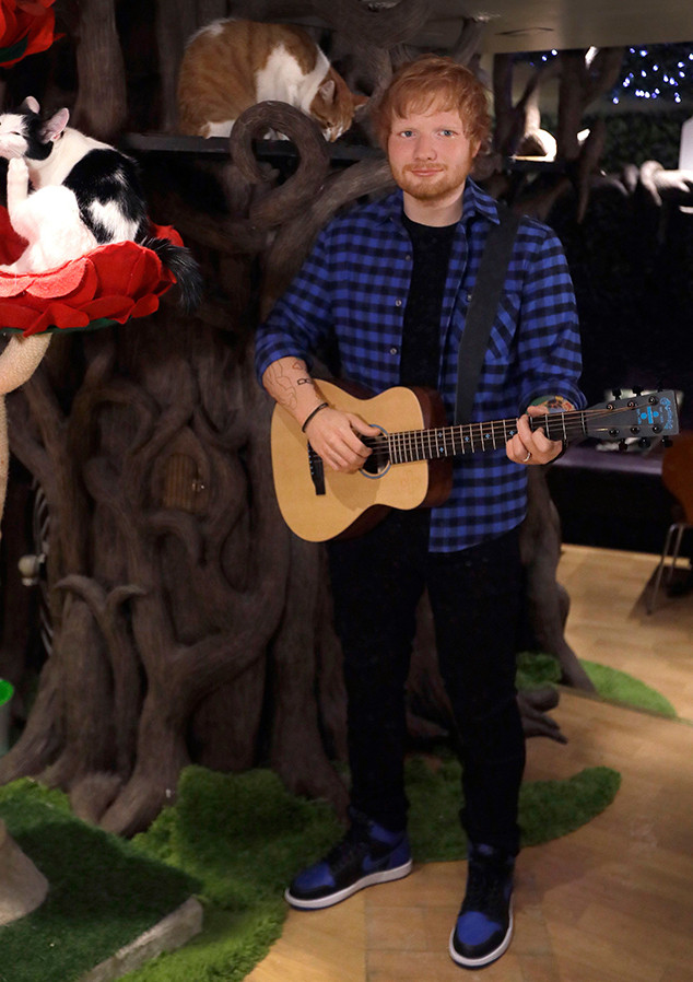 Ed Sheeran, Wax Figure