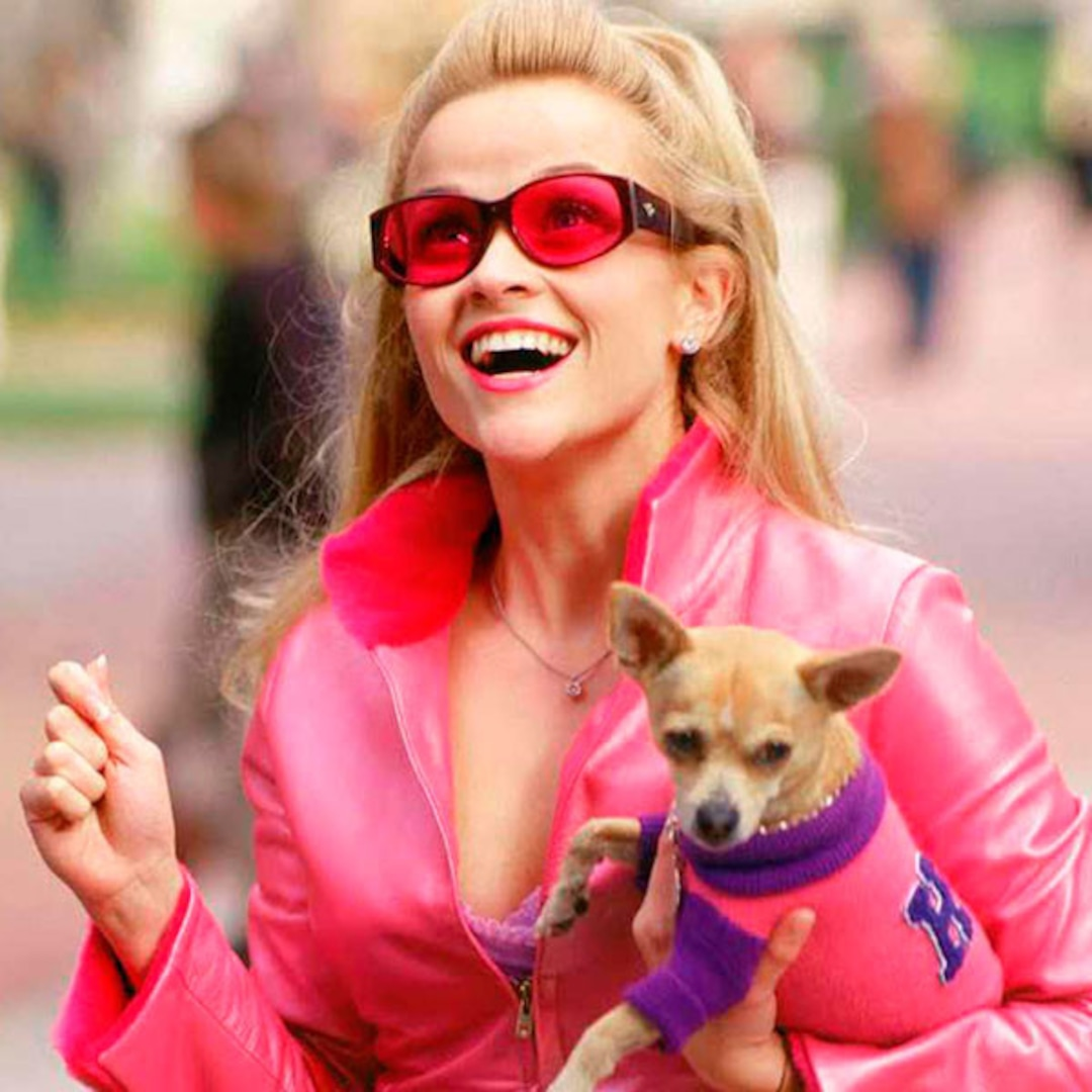 Reese Witherspoon's Legally Blonde 3 Gets a Release Date: All the Details