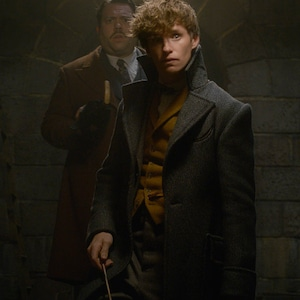 Branded: Fantastic Beasts