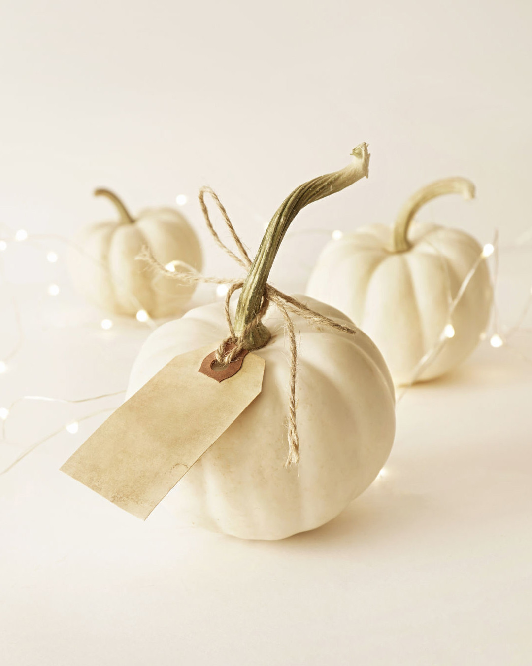 Shopping: Chic Halloween Decor