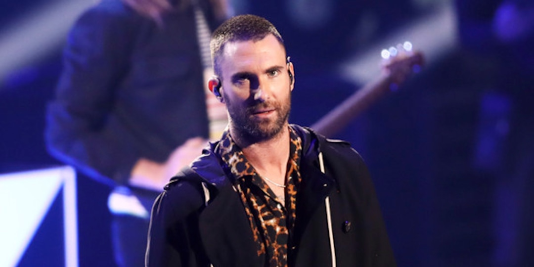 Adam Levine Responds to Criticism of His Onstage Reaction After Fan Grabbed Him During Maroon 5 Concert - E! Online.jpg