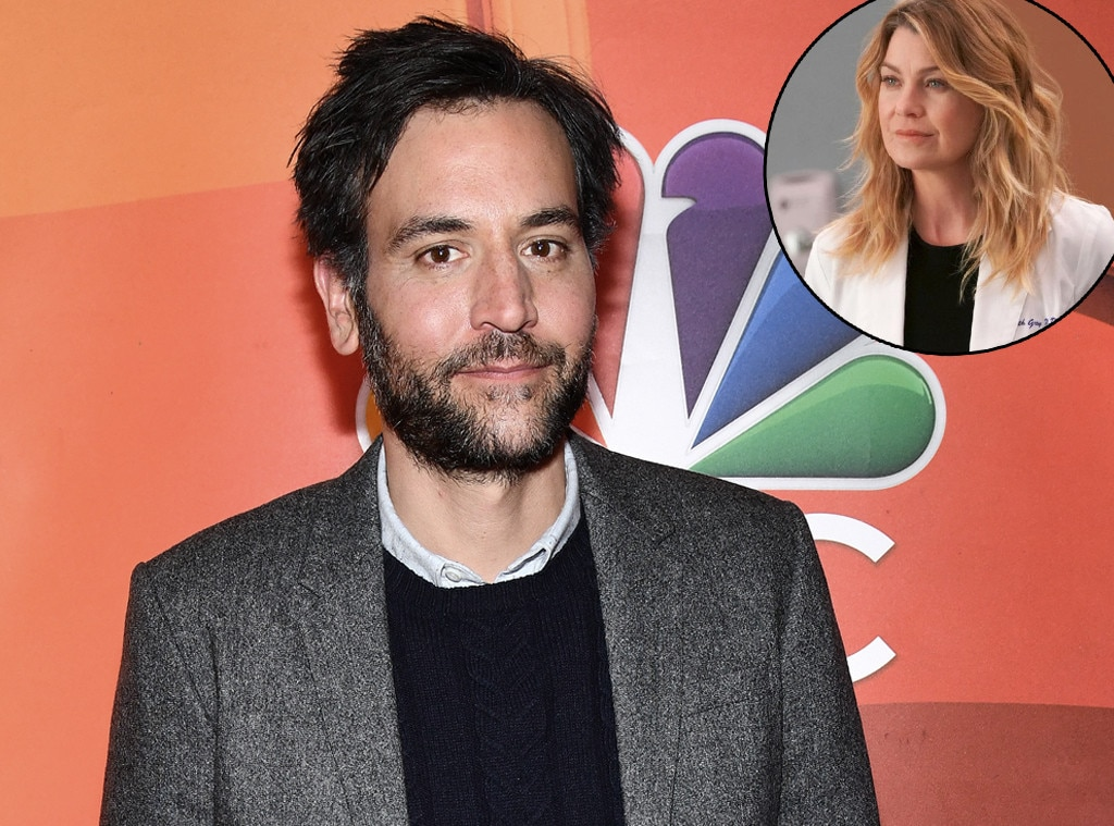 Grey's Anatomy casts Josh Radnor as love interest for Meredith