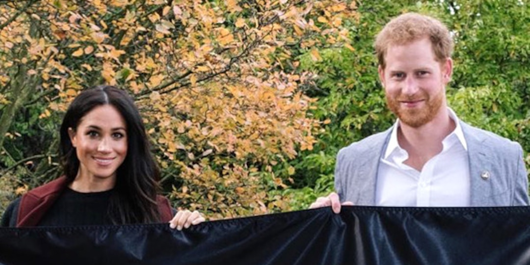 Meghan Markle and Prince Harry Announce First Netflix Series Heart of Invictus - E! Online.jpg