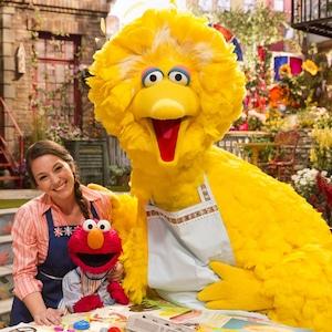Big Bird, Sesame Street