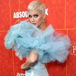 Katy Perry, AmfAR