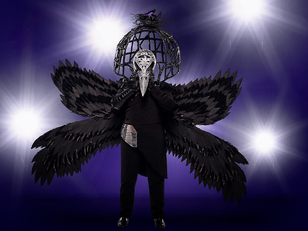 The Raven from The Masked Singer: Meet the 12 Disguised ...