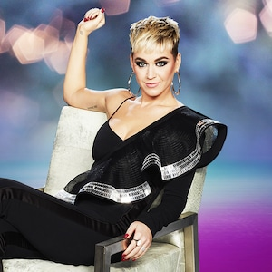 Katy Perry, Private World