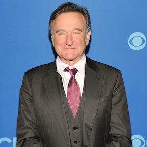 Robin Williams, 2013
