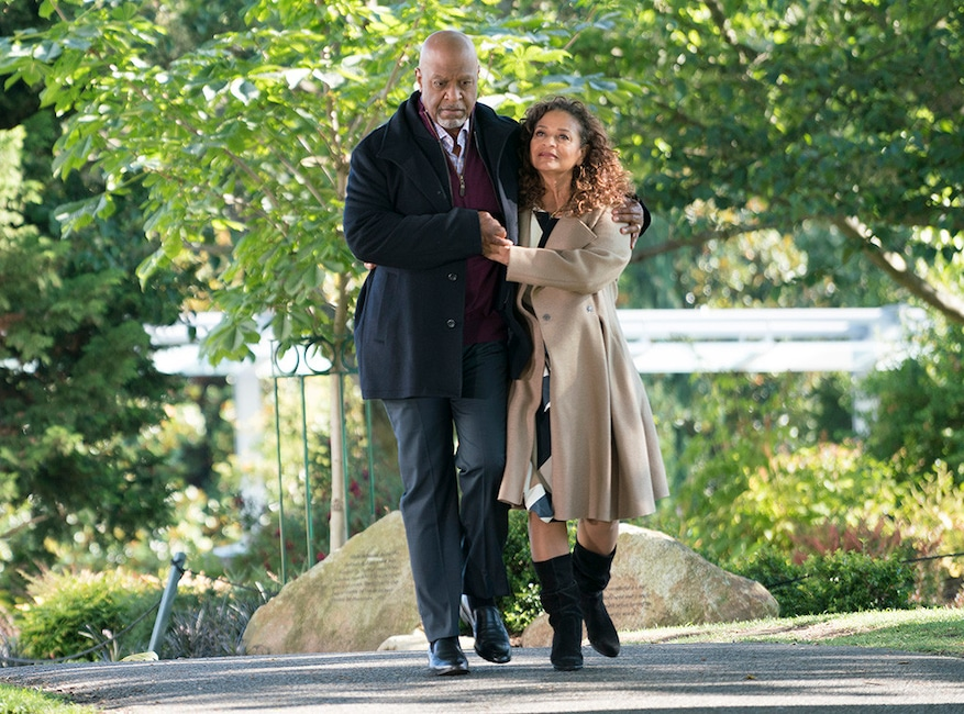 James Pickens Jr, Debbie Allen, Grey's Anatomy