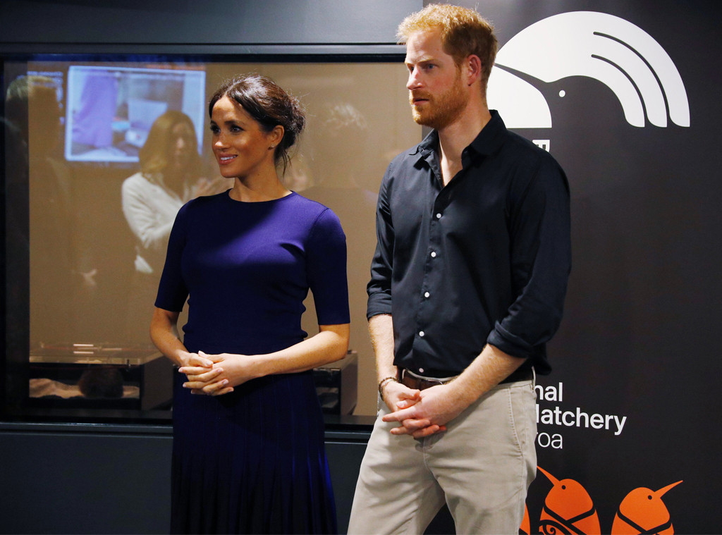 Meghan Markle, Prince Harry, Kiwi Hatchery, New Zealand