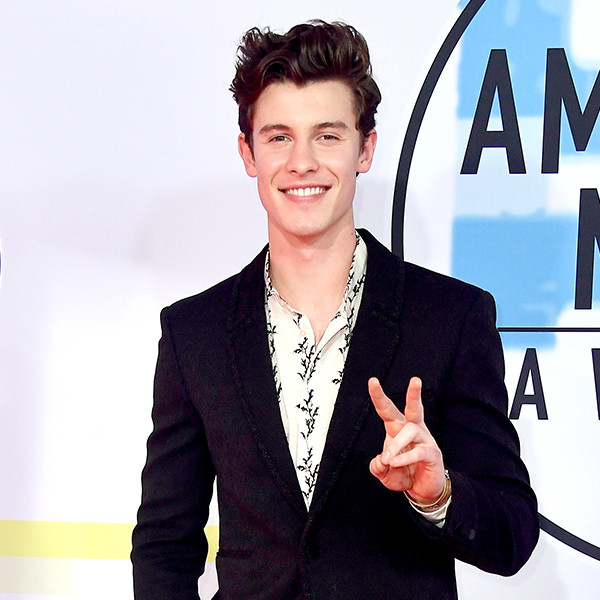 Shawn Mendes Poses Shirtless With an Avocado and Stars Are Here for It