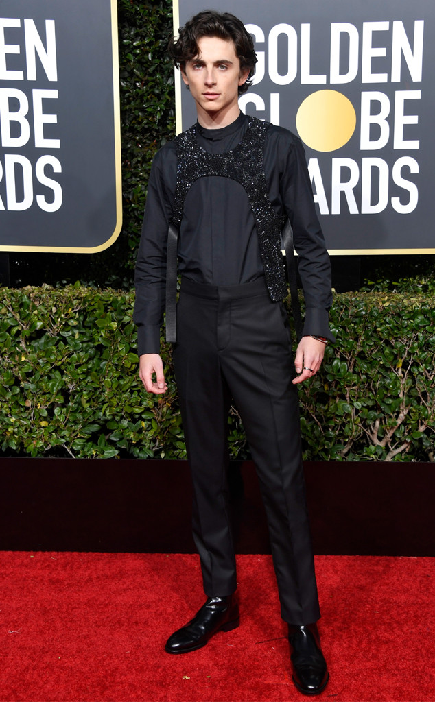 Timothee Chalamet, 2019 Golden Globe Awards