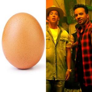 world_record_egg, Despacito