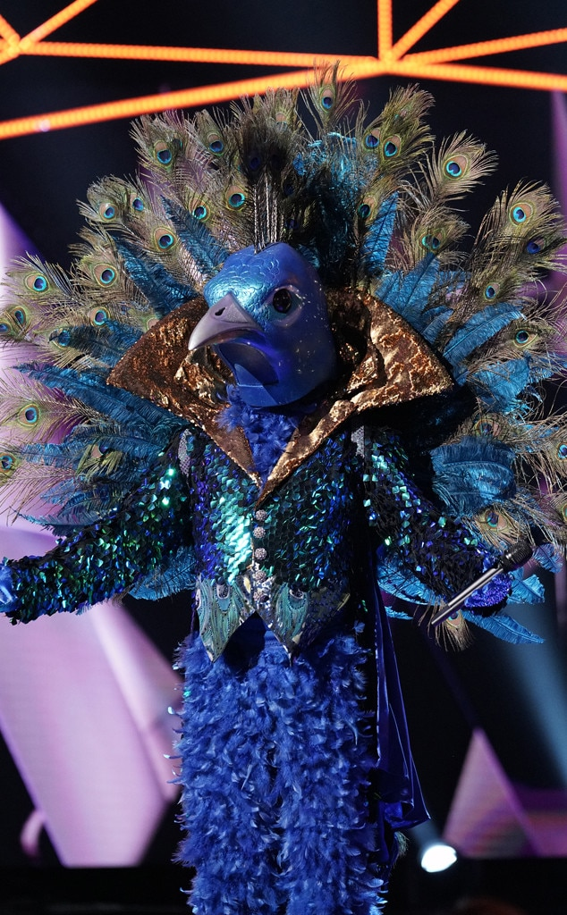Character Conception -  Before casting its 12 celebrities,  The Masked Singer  team designed 20 costumes to give potential contestants a sense of what they could dress up as on the show. But once they signed on, Ibirra said they really wanted the celebrity to pick the one they most identified with and it often had surprisingly emotional outcomes.