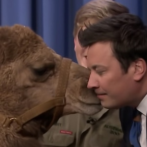 Jimmy Fallon, Camel