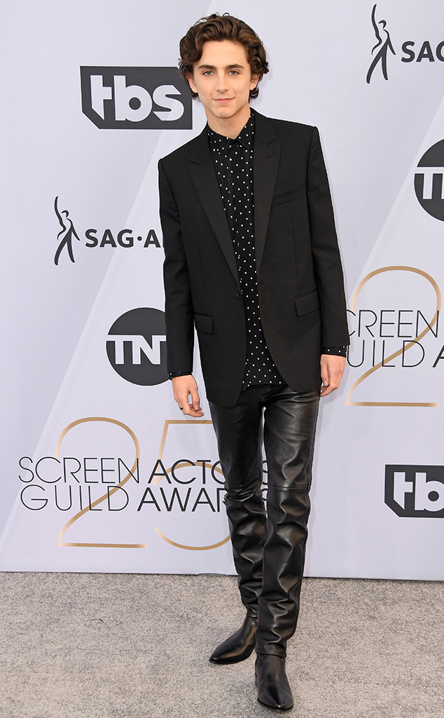 Timothee Chalamet, 2019 SAG Awards, Screen Actors Guild, Red Carpet Fashions