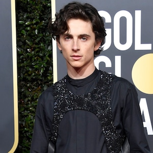 Timothee Chalamet, 2019 Golden Globes, Golden Globe Awards, Red Carpet Fashions