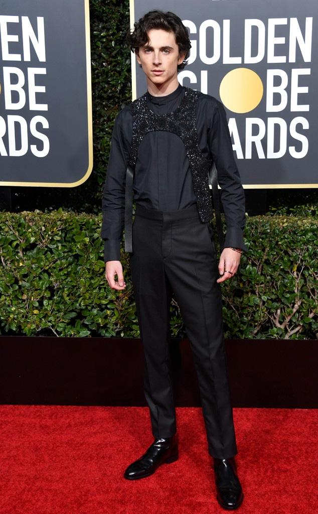 Timothee Chalamet, 2019 Golden Globes, Golden Globe Awards, Red Carpet Fashions