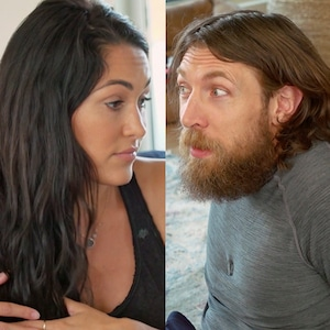 Brie Bella, Daniel Bryan, screengrabs
