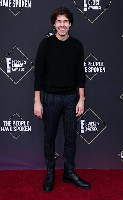 David Dobrik, 2019 E! Prix du public, mode tapis rouge