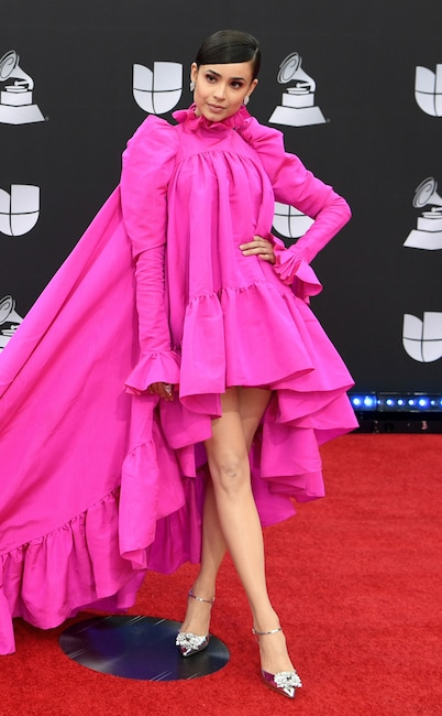Celebs Who Made The 2019 Latin Grammys Best Dressed List