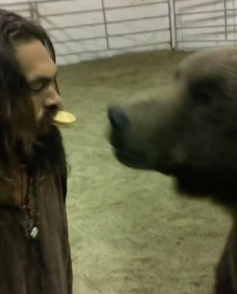 Jason Momoa, Bear