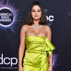 Selena Gomez, 2019 American Music Awards, Red Carpet Fashion, Fashion Police Widget