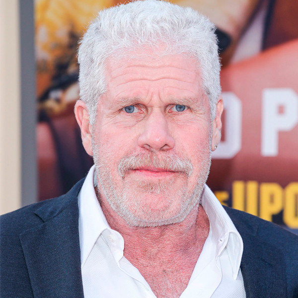 Ron Perlman Files for Divorce From His Wife of Almost 40 Years