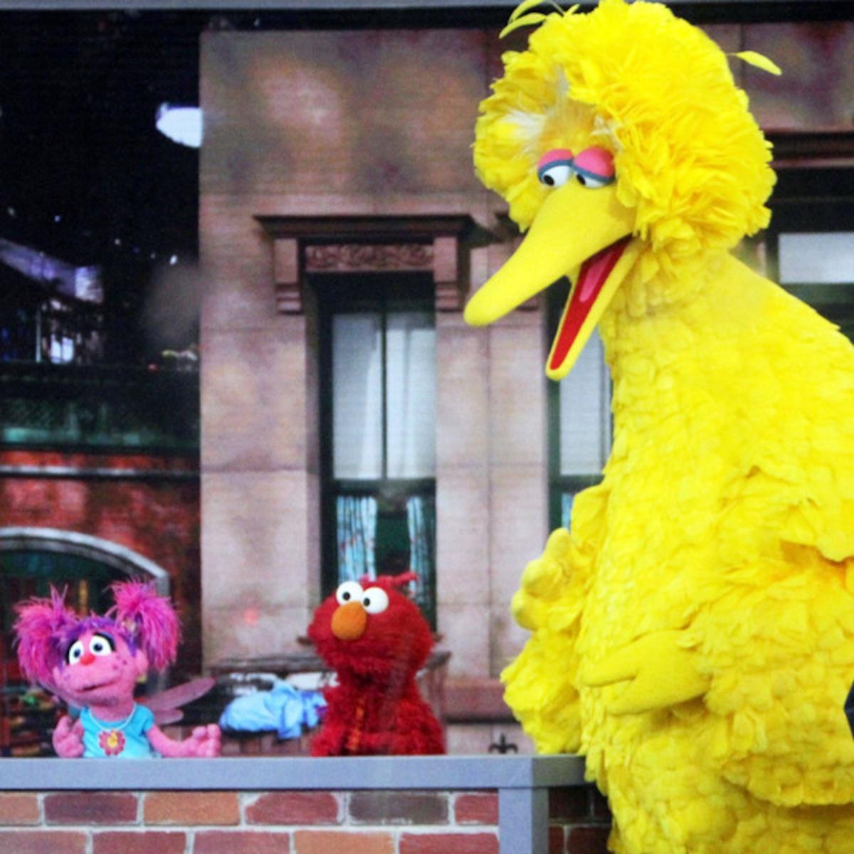 20 Secrets About Sesame Street Revealed E News