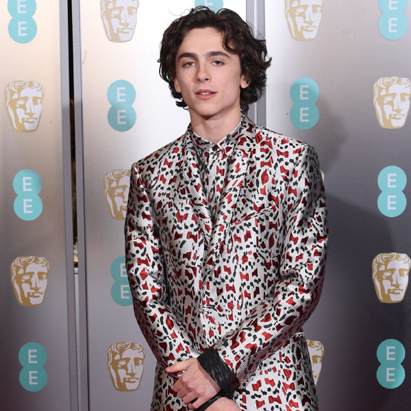 Timothée Chalamet Is Hailed the Internet's King With New Movie Poster