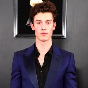 Shawn Mendes, 2019 Grammys, 2019 Grammy Awards, Red Carpet Fashions