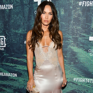 Megan Fox, Fashion Police Widget
