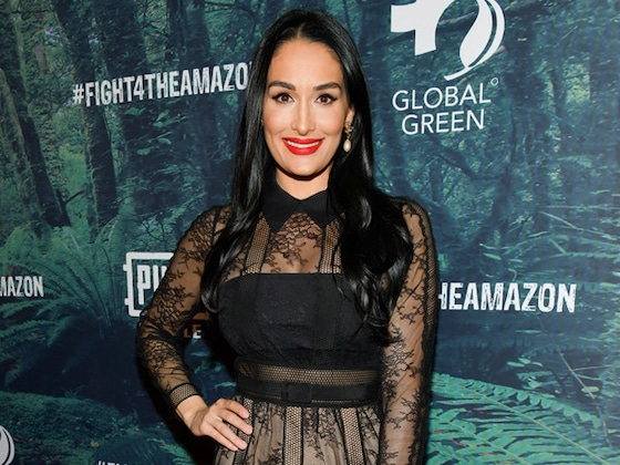 Pregnant Nikki Bella's Thoughts on Family Prove She Was Destined to Be a Mom
