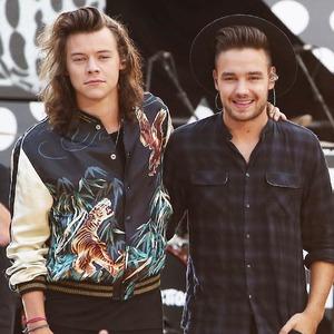 Harry Styles, Liam Payne