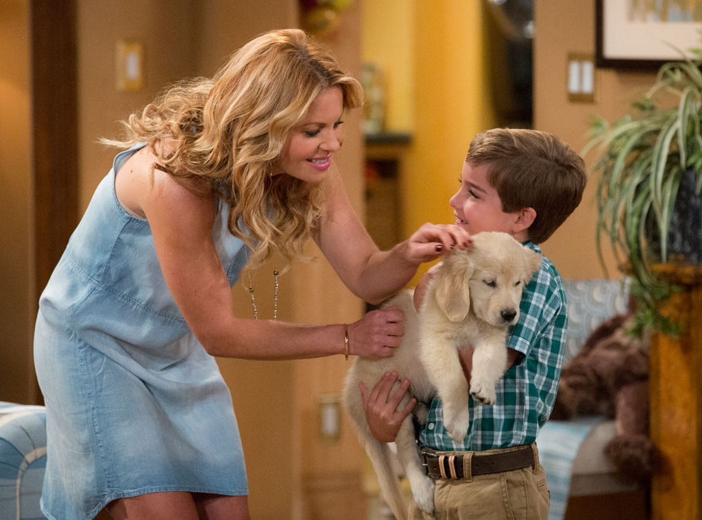 Fuller House Dog Cosmo dies after surgery complications