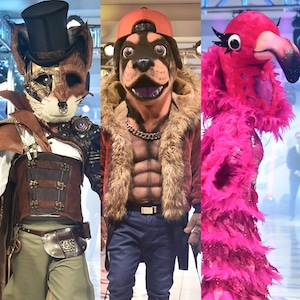 The Fox, The Rottweiler, The Flamingo, The Masked Singer