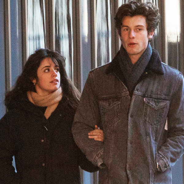 """Shawn Mendes and Camila Cabello Make Beautiful Music Together Again With """"The Christmas Song"""""""