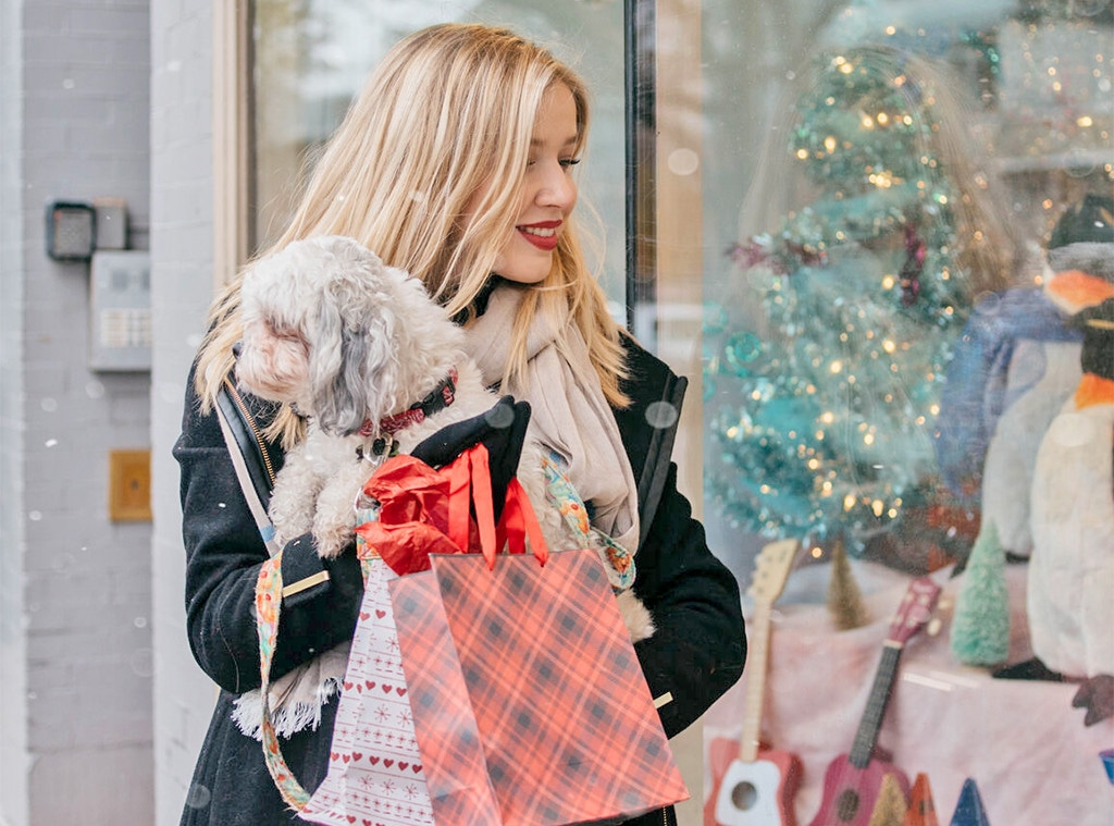 Winter Shopping Sales, Stock Image