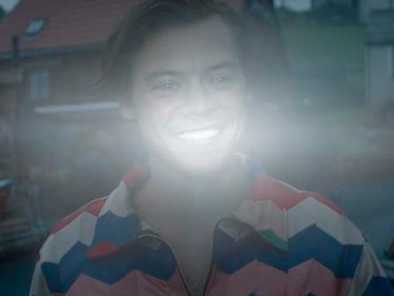 Harry Styles hace la amistad más inesperada en el nuevo videoclip de <i>Adore You</i> ¡Míralo!