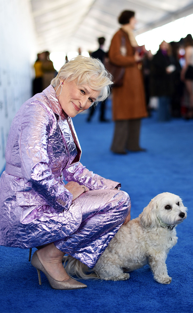 Glenn Close, dog, 2019 Film Independent Spirit Awards