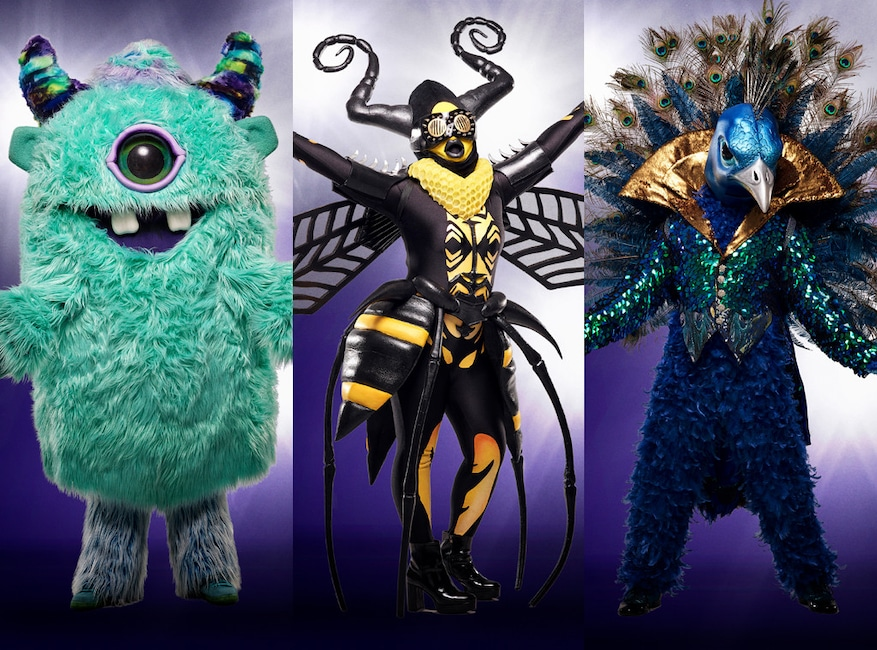 Maskirani pjevač, pčela, čudovište, paun