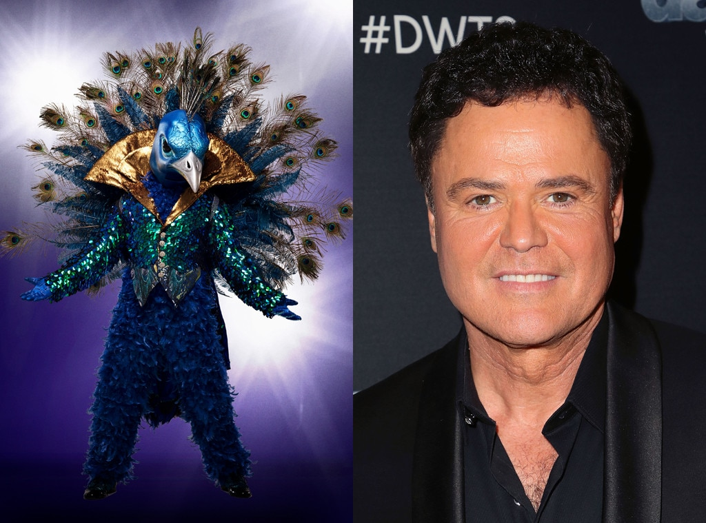 The Rabbit from The Masked Singer: Meet the 12 Disguised Celebrity