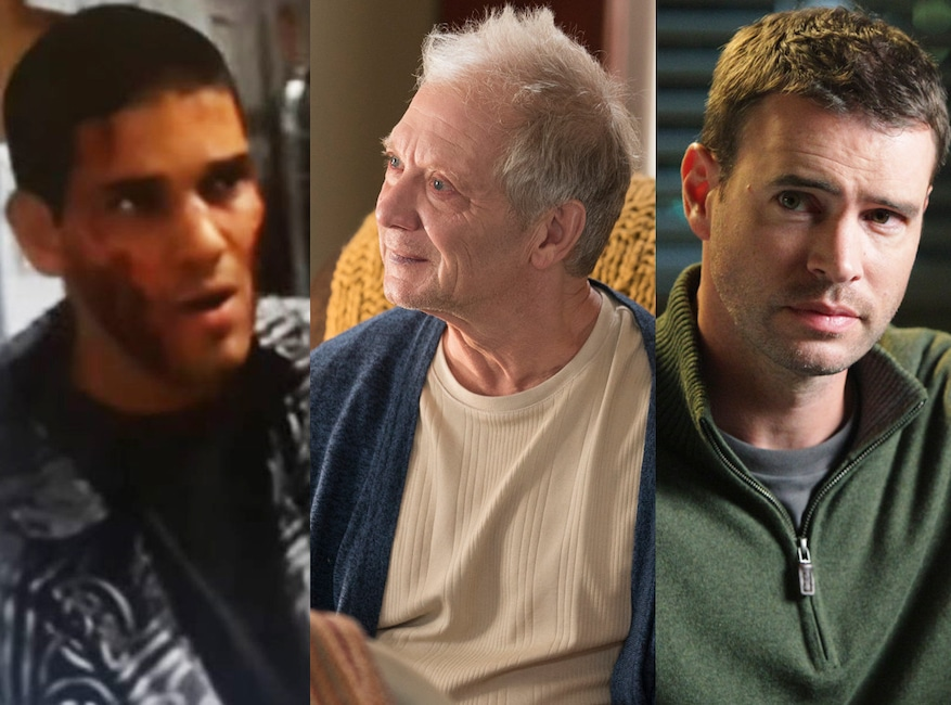 ER, Greys Anatomy, Guest Stars, Guillermo Diaz (ER)/Jeff Perry and Scott Foley (GREY'S)